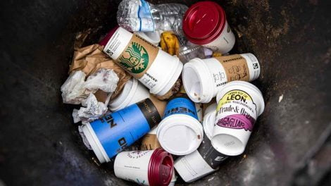 single-use coffee cups
